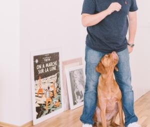 Man trainen voor hondenschool